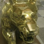 golden panther
